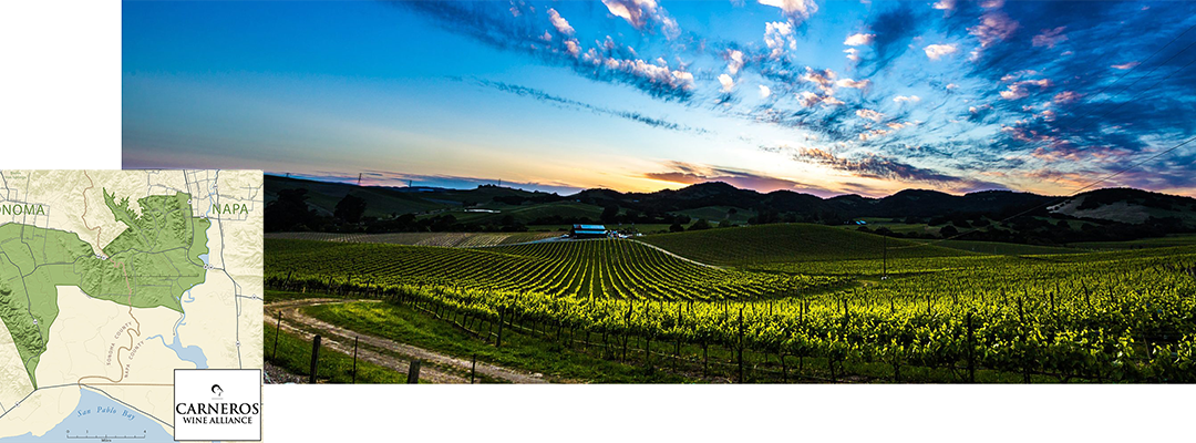 Los Carneros – The Valley's Coolest Sibling